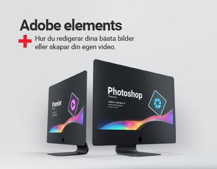 Derfor skal du Adobe team